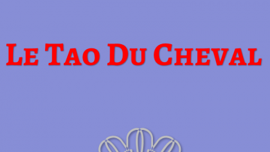 Photo of Le Tao Du Cheval PDF